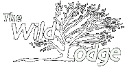 The Wild Lodge